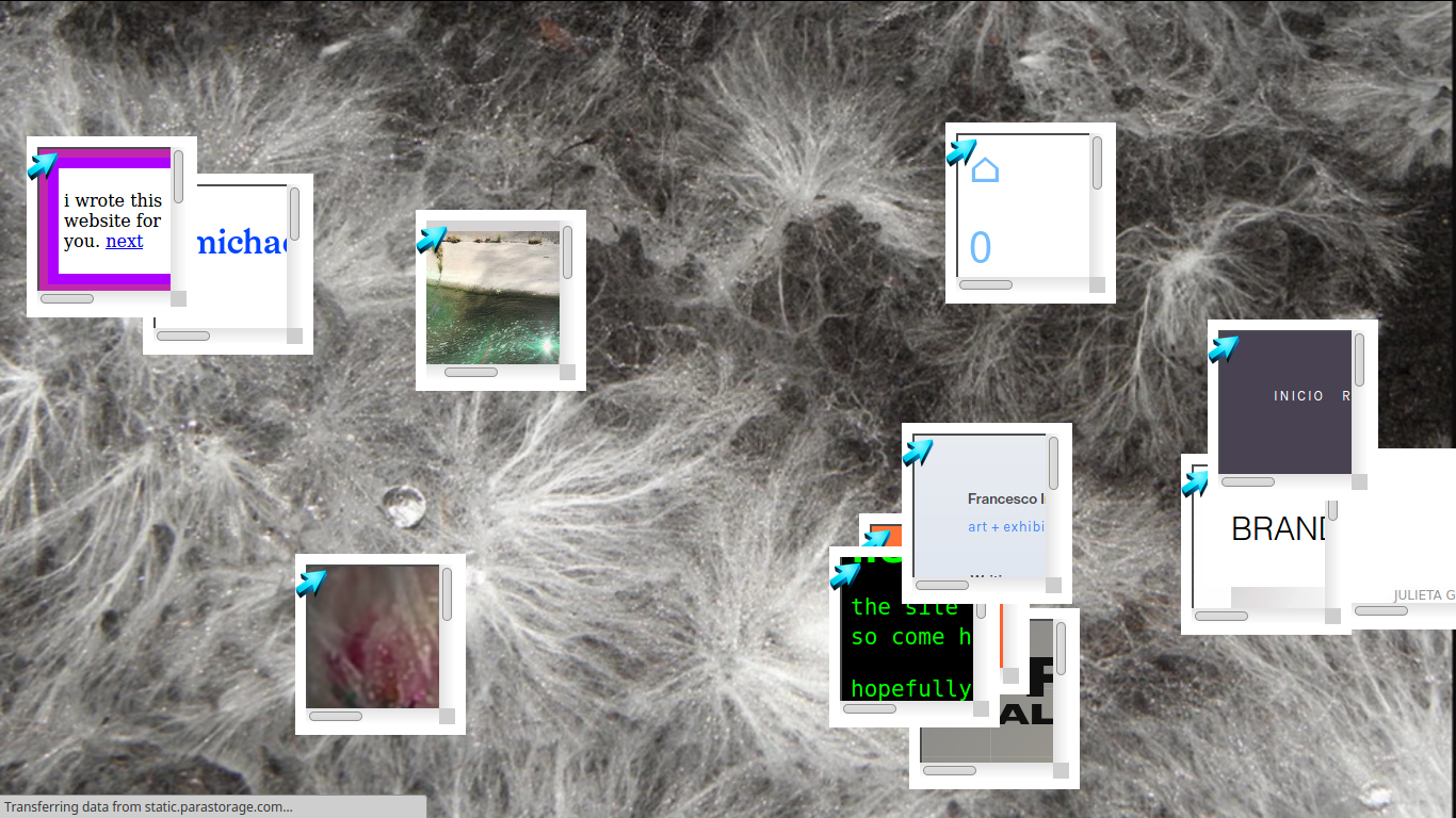 Webring project website, 10 instantiations of the webring are scattered over an image of a mycelial network, all linking to different sites that were part of the project